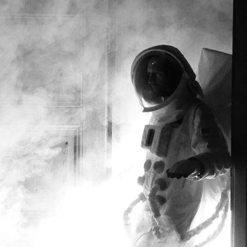 14/12 •N'avons nous pas autant besoin d'abeilles et de tritons crêtés que de liberté et de confiance ?